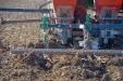 PlantadoraAjosJJBroch-10