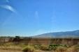 California-045