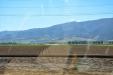 California-056