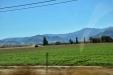 California-066