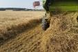 cosecha_cereales-05