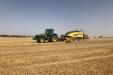 cosecha_cereales-14