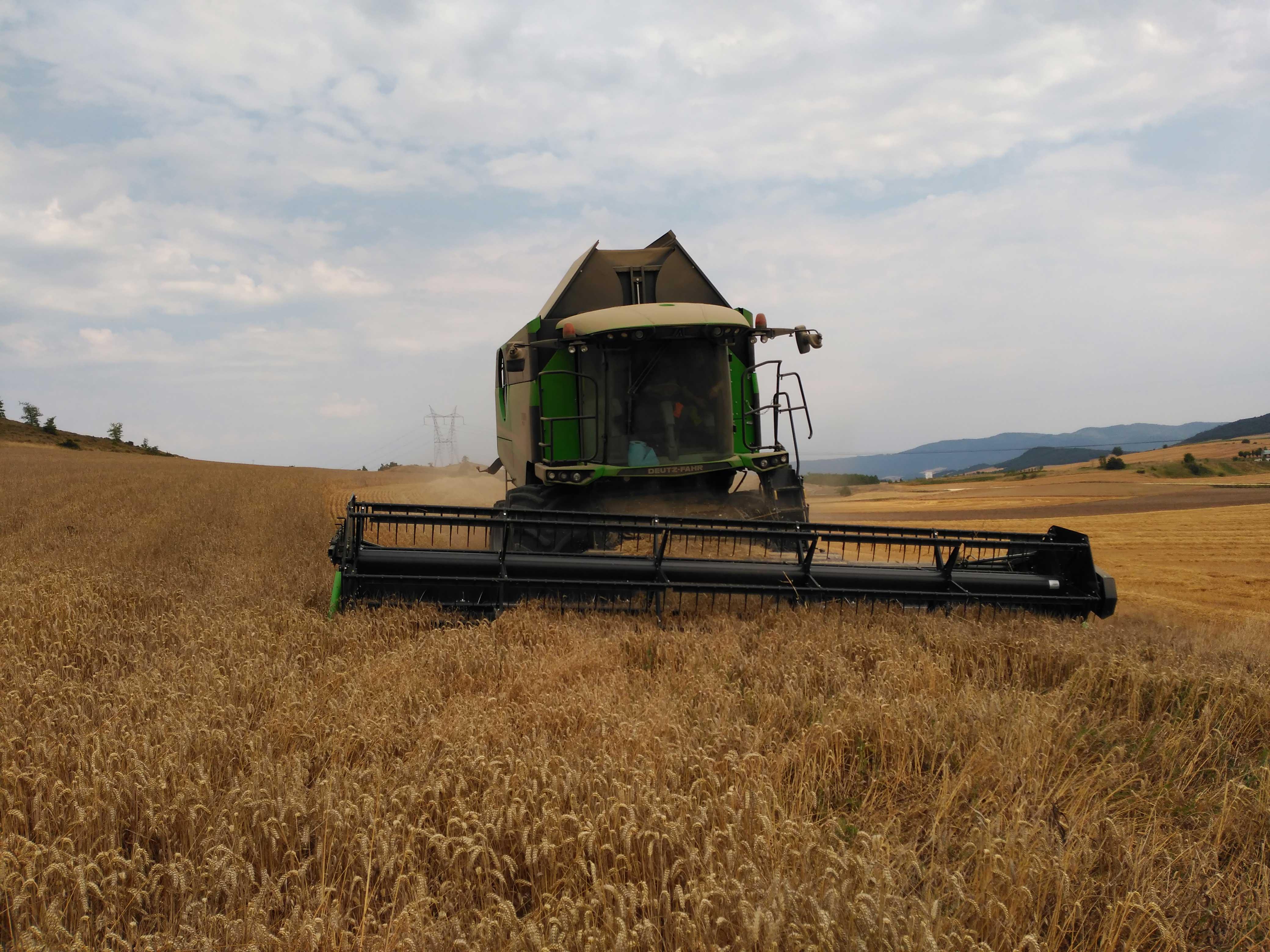 cosechadora-Deuzt-Fahr-C9602-TSB20