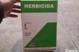 Haboncillos-10