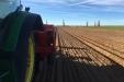 Plantando_patatas_salamanca-04
