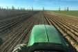 Plantando_patatas_salamanca-07